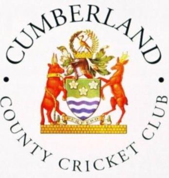 c cricket