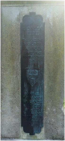 6-plaque