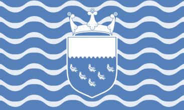 WEST SUSSEX CO 2007 FLAG