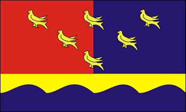 COMP FLAG