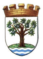 WORCESTERSHIRE COUNCIL ARMS