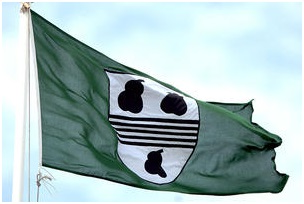 worcs cricket flag.png