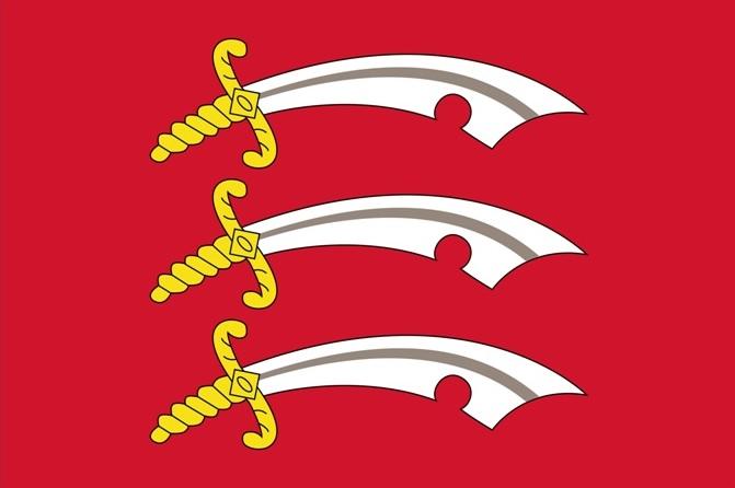 Essex lokale valg 2013