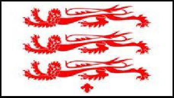 BANNER OF ARMS