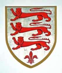 DORSET COUNCIL ARMS