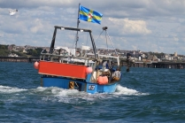 A Pembrokeshire fishing vessel flies the county flag.