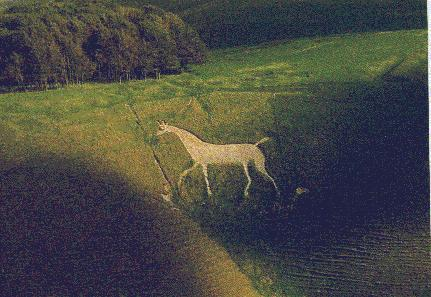 cherhorse.jpg