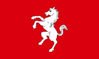 BEST FLAG