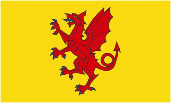 SOMERSET FLAG (2)