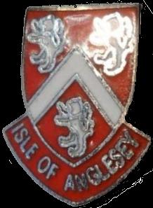 ang-badge