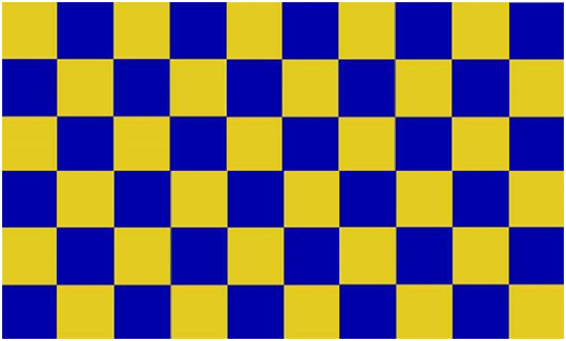 COUNTY FLAG OF SURREY (2)