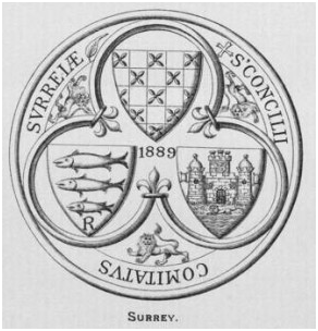 COUNTY SEAL (2)
