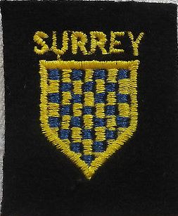 WWII Royal Surrey Regiment Cloth Badge (2)