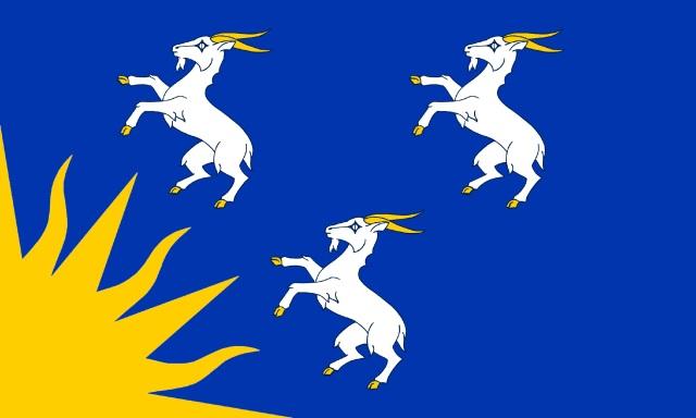 FLAG OF MEIRIONNYDD (2)