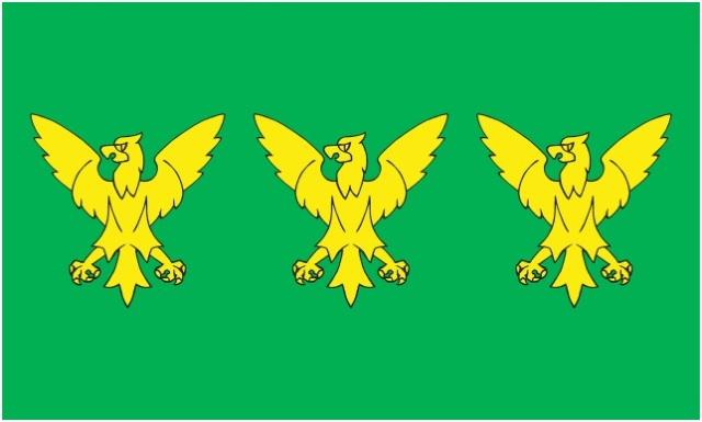CAERNARFONSHIRE FLAG (2)
