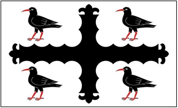 FLINTSHIRE FLAG (2)