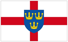 EAST ANGLIA FLAG (2)