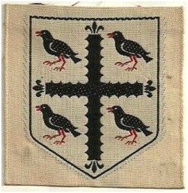 INSERT IMAGE 13 SCOUT BADGE 1 (2)