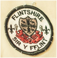 SCOUT BADGE 2 (2)