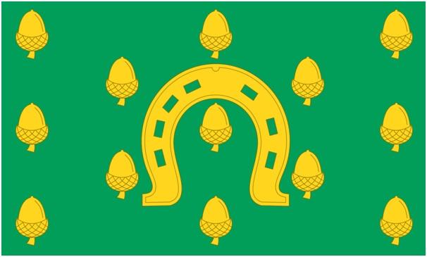 INSERT IMAGE 1 RUTLAND FLAG (2)