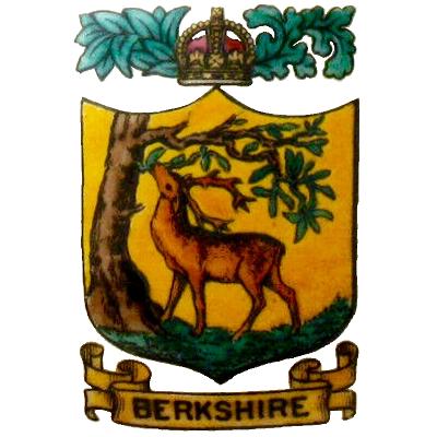 BERKS CC SEAL.png