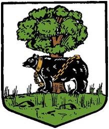 Berwickshire-CC-Arms
