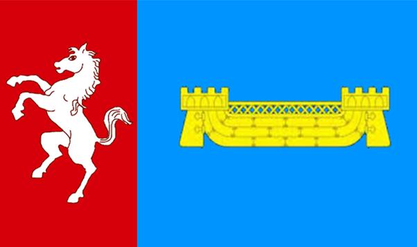 shepway-flag