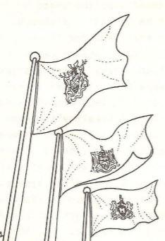 badflags.JPG
