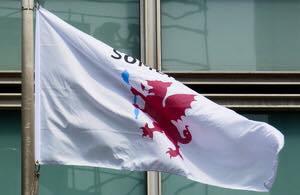 somerset-cc-logo-flag